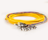 Multi-fiber Patch cord